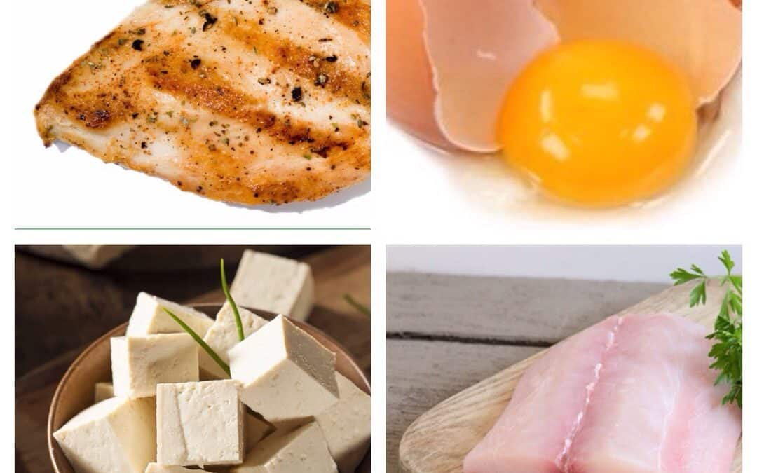 Protein 101: Why it's good for you and where to get it